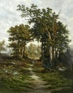 Femme ramassant du bois dans un chemin en forêt.